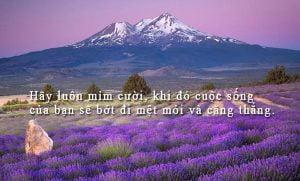 stt-buon-ve-cuoc-song-5