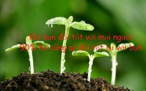 stt-hay-ve-cuoc-song-11