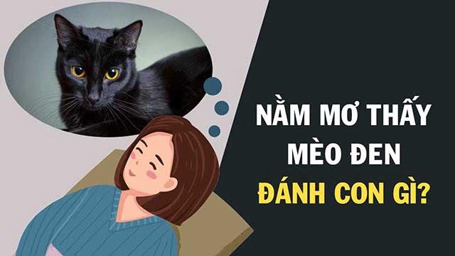 Mơ thấy mèo đánh con gì